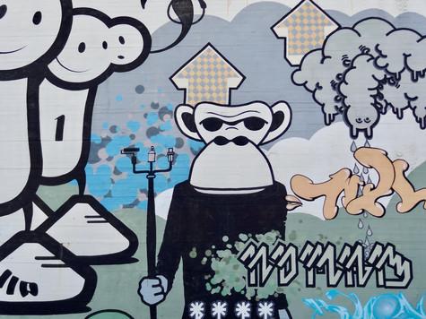 monkey. reykjavik