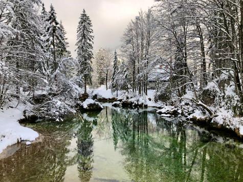 reflection. slovenia
