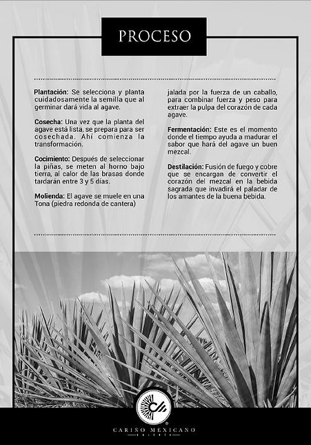 proceso-mezcal-1.png