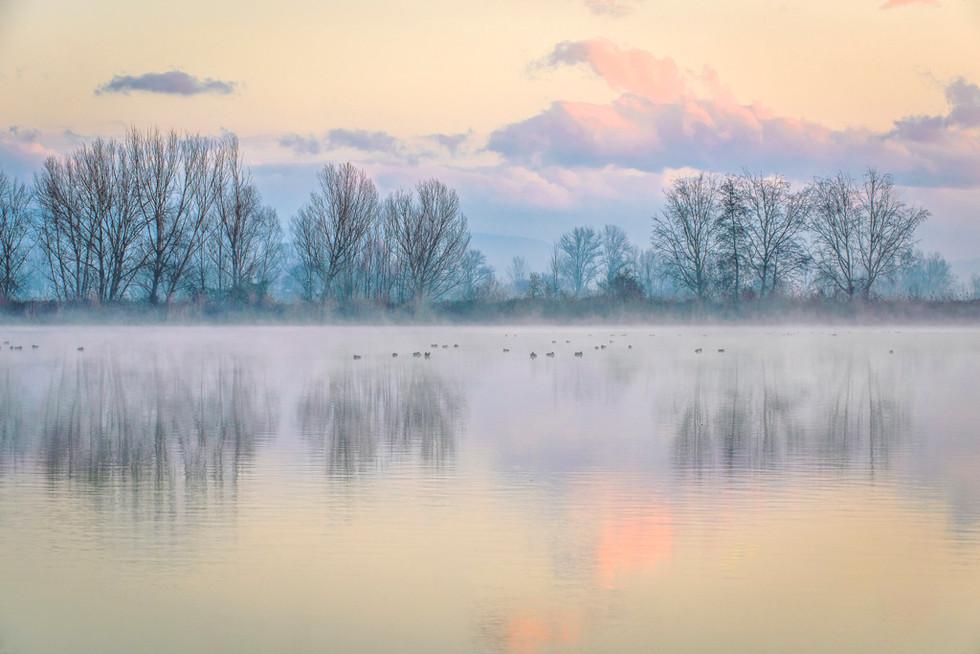 Gherardesca Lake