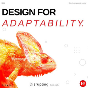 Design for adaptability
