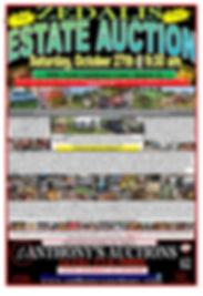 ZEDALIS PP FLYER FINAL 4-page-001.jpg