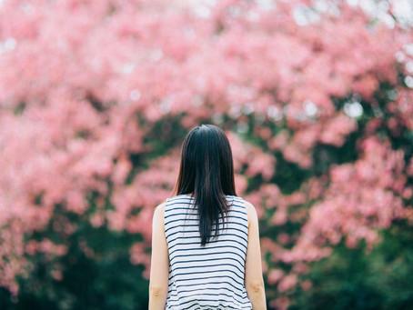 Guide to Mindful Meditation