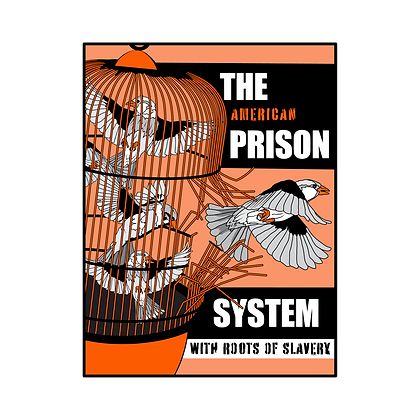 Systemic Racism Zine Bundle