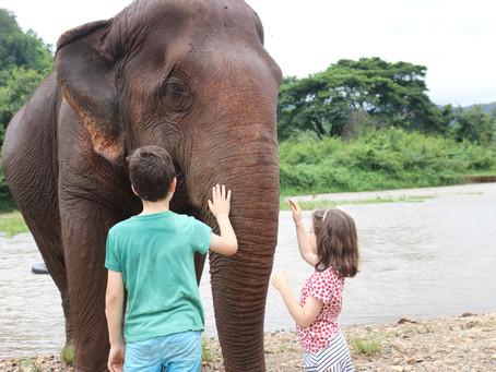 Retrospect Travel Log: Chiang Mai