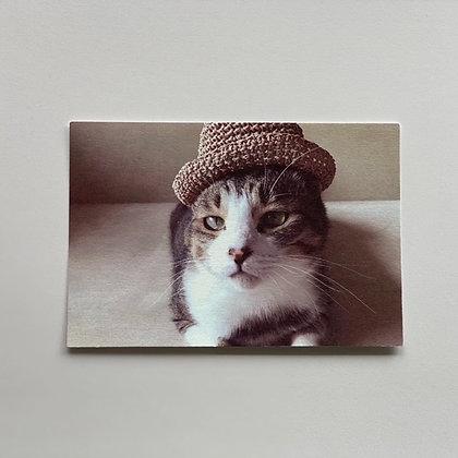 teteオリジナル ポストカード(麦わら帽子)