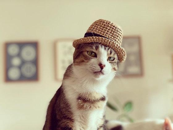 麦わら帽子(ブラックリボン)