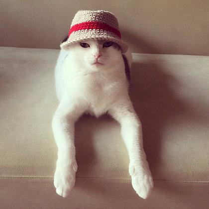 ニット帽・A