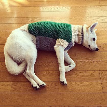 森のセーター