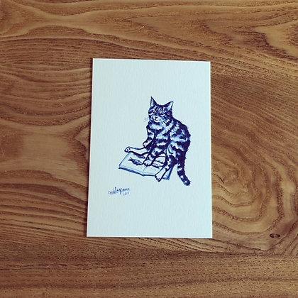 teteオリジナル ポストカード(青いシリーズ-River fish is beatiful / 川魚は綺麗だニャ)
