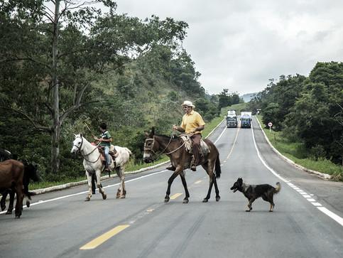 Foto Aleatória - A caravana passa e os caminhões também.