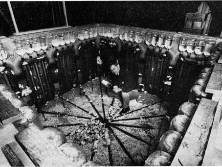 Эксперимент «Вселенная — 25»: как рай стал адом