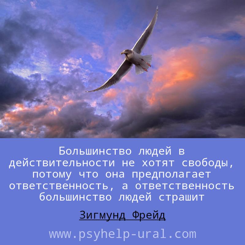 цитата, свобода, ответственность, Зигмунд Фрейд, птица в полете, облака,
