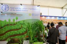 Stand Food and Agriculture Organization  di Pameran Hari Pangan Sedunia 2018.