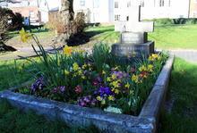 Grave.288162fd24080baf83fd180720870bf288