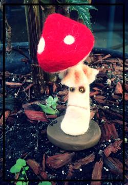 Unhappy Mushroom