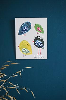 Les oiseaux - impression d'après un dessin original à aquarelle