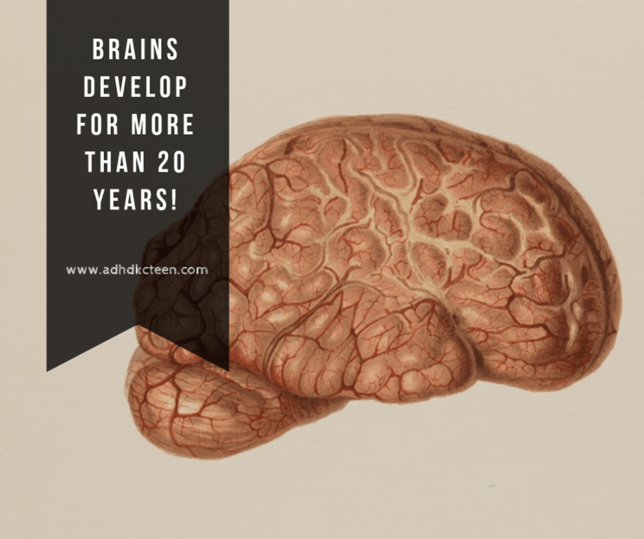 Brains don't stop growing when we do. Learn more at www.adhdkcteen.com. #adhd #adhdkcteen