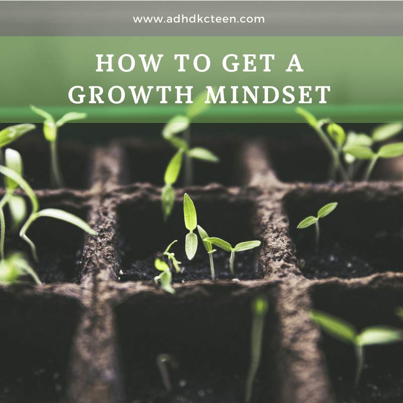 A growth mindset is correlated with success more than intelligence. So how do you get it? Did you know your brain can learn to change the way it works? It doesn't just learn the new information you study at school. Our brains are able to change and adapt. You can learn to use your brain to your benefit through developing a growth mindset.