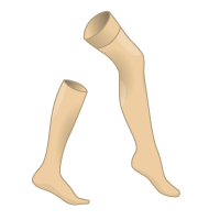 stockings_brown.png