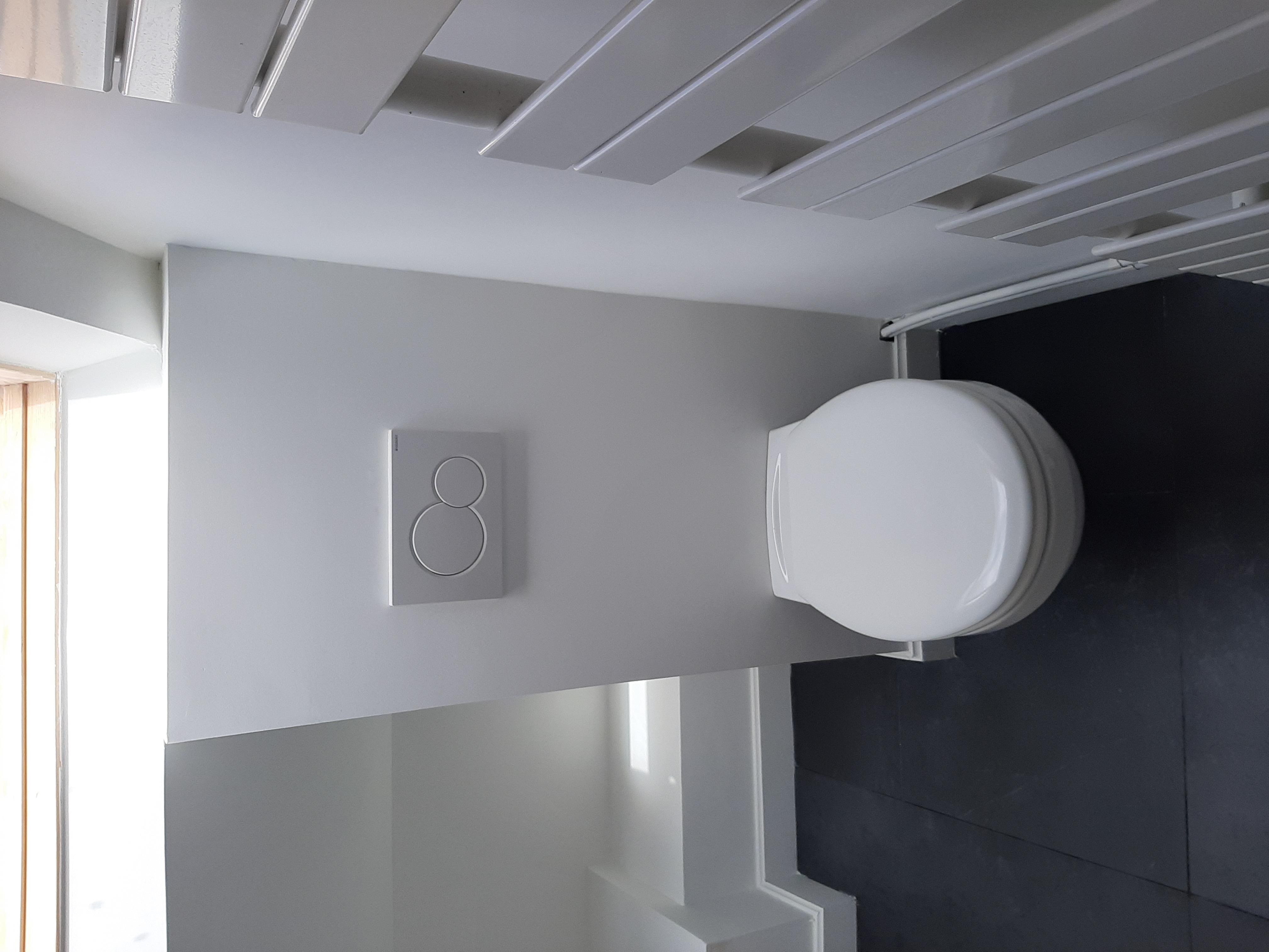 Peinture et Pose du WC suspendu