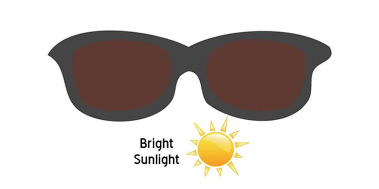 Bright Sunlight.jpg
