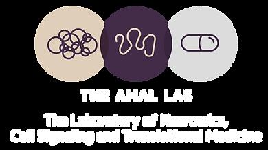 amal lab logo3-07.png