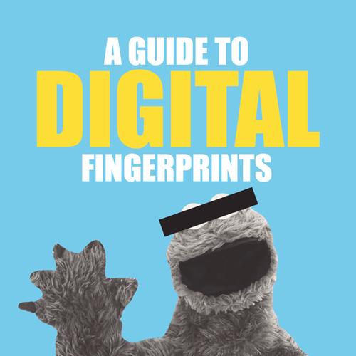 A Guide to Digital Fingerprints