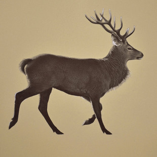Running Stag