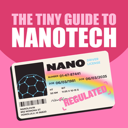 The Tiny Guide to Nanotech