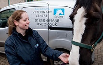 Worming for horses