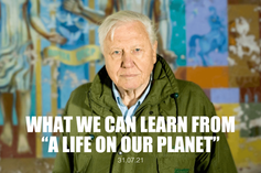 """What We Can Learn from """"A Life on Our Planet"""""""