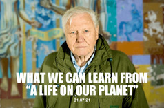 """What We Can Learn from a """"Life on Our Planet"""""""
