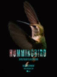 HUMMINGBIRD Movie Poster.jpg