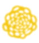 blume logo 1.PNG