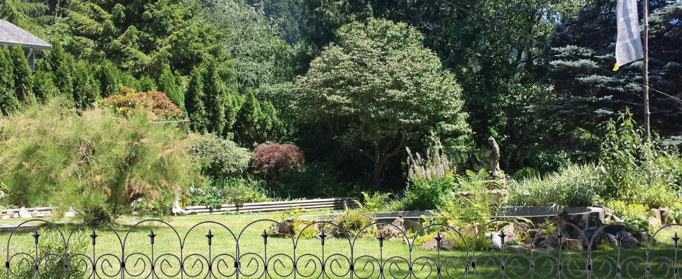 large Karma garden