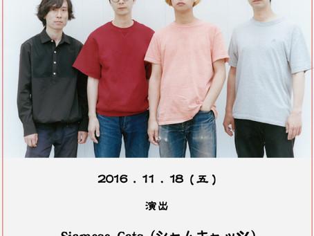 シャムキャッツ初の台湾公演決定! / 東京indies pop的大熱門<SiameseCats>台灣公演決定!