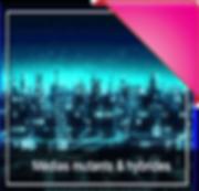 Medias_mutants-hybrides-CON.png