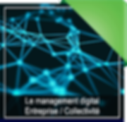 Management_DIGITAL_entrepri.png
