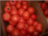 Tomatoes treated with ROS