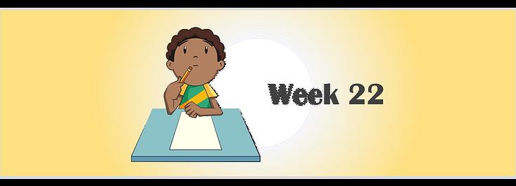 Week 22 banner.png