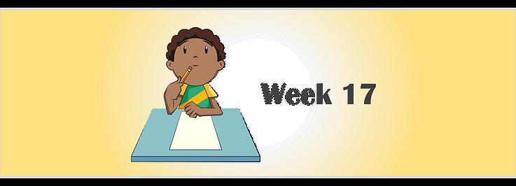 Week 17 banner.png