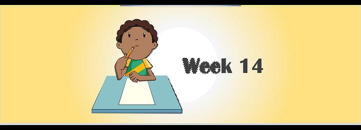 Week 14 banner.png