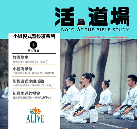 ALIVE Dojo of Bible study.png