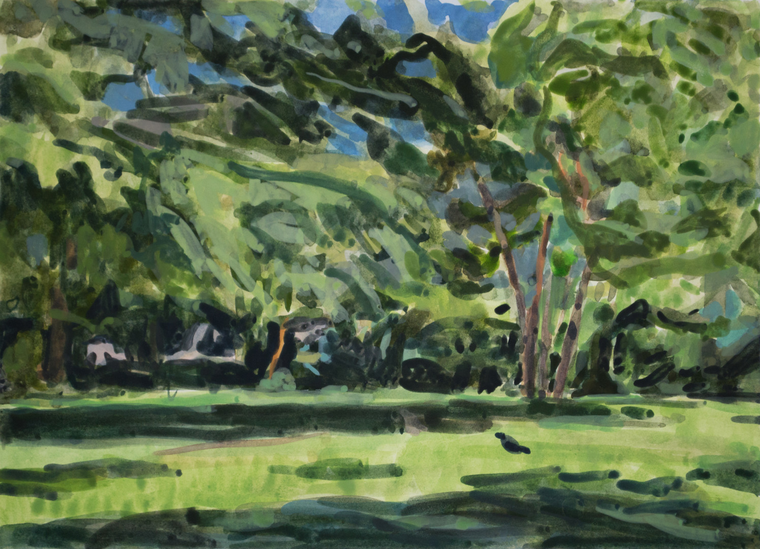 Brian Kelley, Holmes Run Park, Alexandri