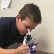 sahuarita-student-microscope.jpg