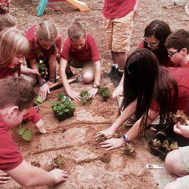 students-planting-gardin-2.jpg