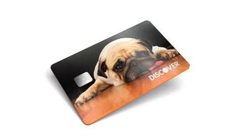 Discover_Pug Card Render_v05.jpg