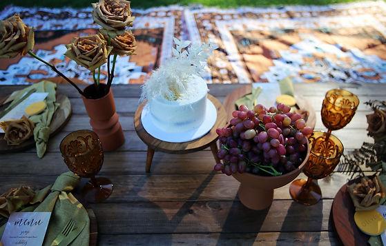Brown_picnic_9.jpg