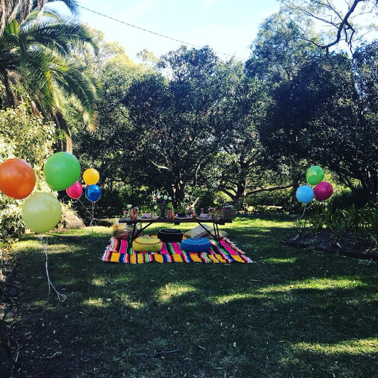 Themed Picnics for all occassions